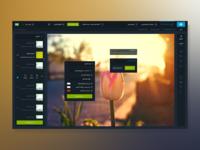 BlueScreen Designer - Weather Region
