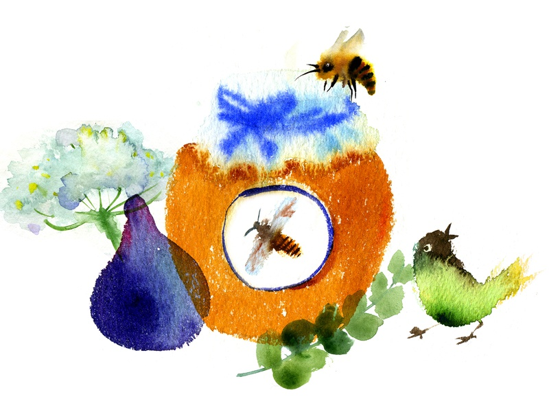 Honey and figs menu illustration watercolor cuisine bees figs honey food