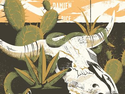 Damien Rice SW Poster