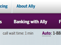 Banking with Ally