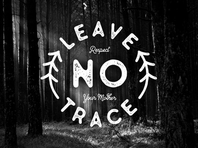 Leave No Trace badge mother earth nature leave no trace