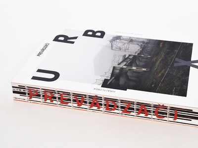 Book_Urban Exploration graphicdesign dtp printing print typography publishing binding cover layout bookdesign book