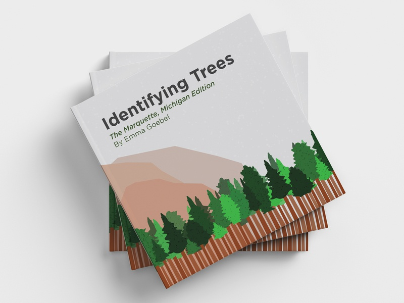 Identifying Trees Book children book design book art tree rings tree vector artwork vector michigan trees michigan marquette biology trees adobe illustrator illustration infographic design inforgraphic infograph book layout book book design
