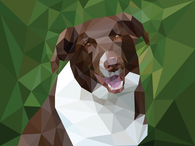 Gracie design challenge dog art michigander michigan designer shapes dog portrait triangles dog lover dog illustration dogs dog low poly portrait low poly art low poly adobe illustrator design vector illustration
