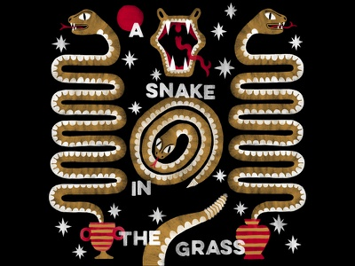 A Snake in the Grass! graphic illustration