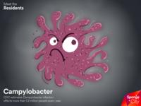 Sponge City: Campylobacter