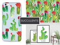 2016 Mio Creative Design Succulent
