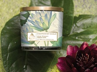 NY Botanical Garden candle concept from Chesapeake Bay Candle