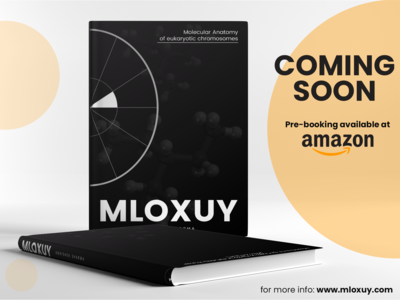 MLOXUY Mock