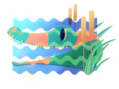 Crocodile animal blue green graphic illustration water crocodile