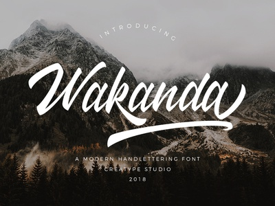 Wakanda Script Font elegant luxury stylish branding logo business fashion natural casual script handwritten handwriting