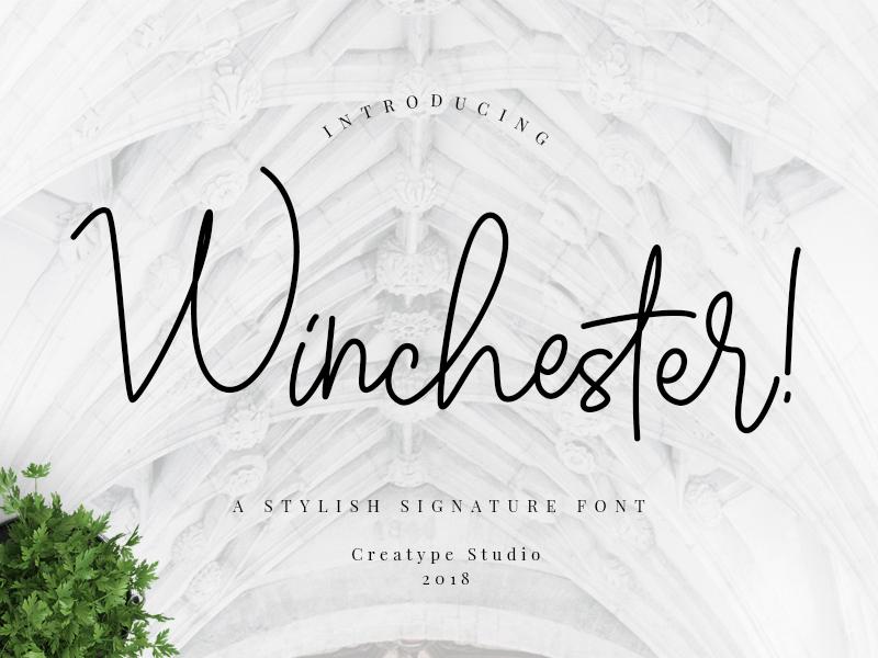 Winchester Signature Script branding signature typography logo fashion natural casual script handwritten handwriting
