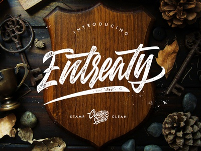 Entreaty Handlettering Script retro stylist vintage ligature handmade swashes logo handlettering urban handwritten branding