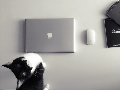 My Desk bw desk tools cat workplace mac mouse photography photo