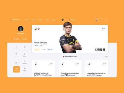 Cybersort portal / profile