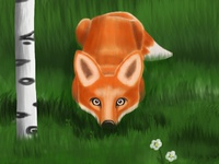 Stealth Cute Fox