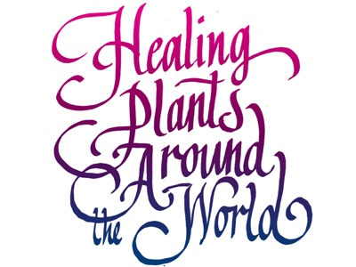 Healing Plants calligraphy typography lettering spotco