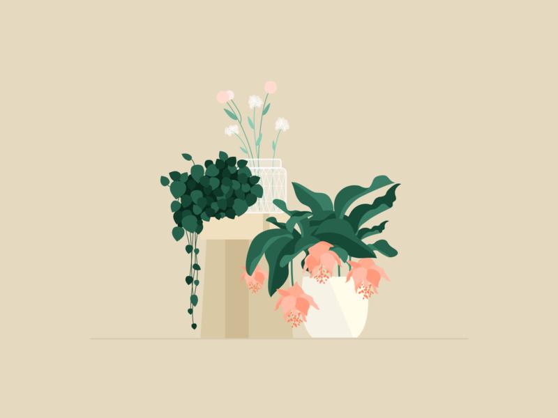 Illustration | Flowers 🌺 garden nature plants decoration flowers flat vector minimal illustration sketchapp julie charrier
