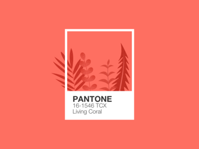 Illustration | Pantone 🦑 plants coral pantone flat ui vector minimal illustration sketchapp julie charrier