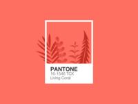 Illustration | Pantone 🦑