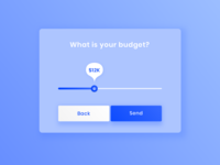 UI  | What is your budget? 💵
