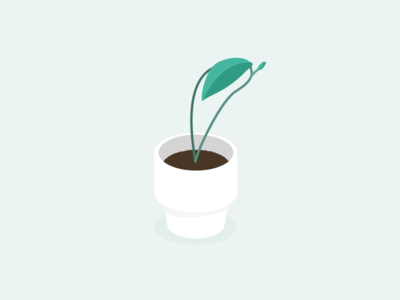Illustration | Plant 🌿 pot leaf plant illustration plants plant ui vector minimal illustration sketchapp julie charrier