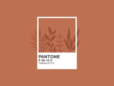 Illustration | Pantone 🎨