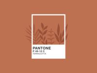 Illustration | Pantone 🎨 classic blue minimalism plants brown natural plant illustration color terracotta pantone2020 pantone flat minimal illustration julie charrier