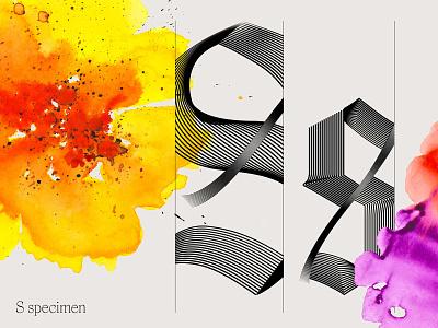 S Specimen type design type work in progress workinprogress wip typeface typeyeah typography type specimen specimen