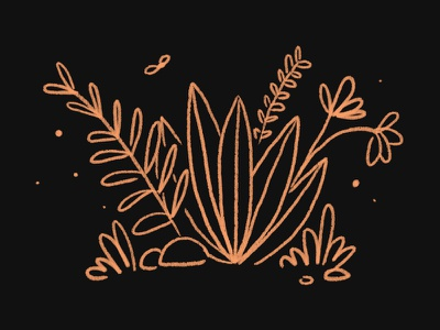 Explore something new plants illustration