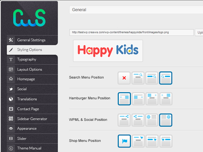 Our Theme Options Panel wordpress panel options theme