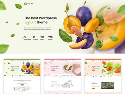 Orgafit Organic and Health WordPress Theme