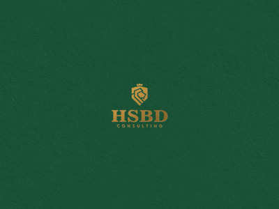 HSBD Consulting logo