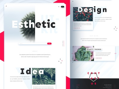 Esthetic UI Kit - Homepage minimal sketch photoshop psd landing webdesign web material modern uikit ux ui