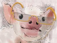 Pig Reader