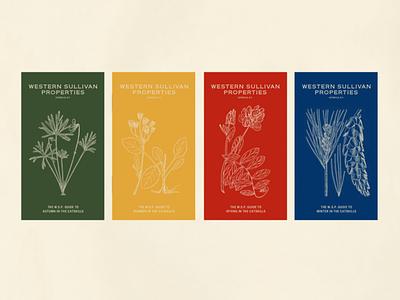 Western Sullivan Properties Booklet System nature illustrations illustration design color system pamphlet design booklet design catskills plants flora graphic design cover design seasons