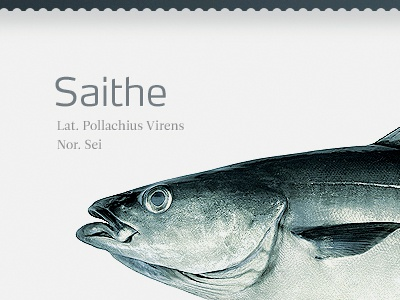 Fishy product