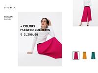 Exploring Zara Website