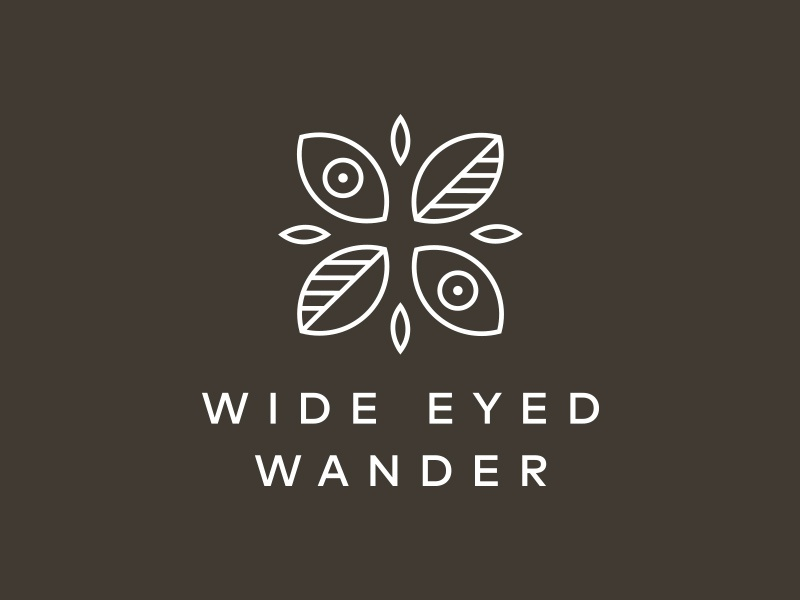 Wide Eyed Wander identity mark leaves eyes lines illustration minimal coffee journal