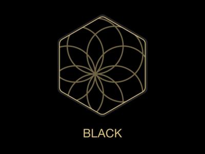 Black - Animation Shot