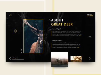 National Geographic Web Concept info wiki animals deer iconset brutal journal national geographic concept website web ui matid design