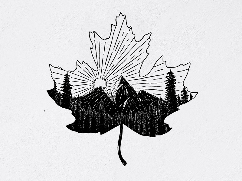 Leaf Illustration by Austin Moncada blackandwhite forest mountains leaf wildlife great outdoors camping drawing wilderness camping illustration hand drawn