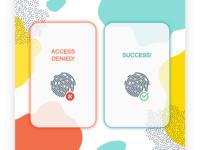 Flash Message - Error or Success