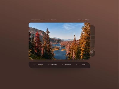 Video Gallery UI web xd adobe design uidesign ux concept gallery video ui