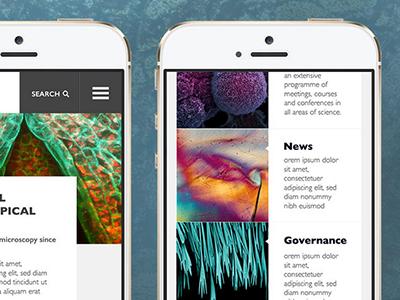 Mobile newsfeed ui digital design newsfeed feed