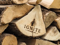 Ignite Stoves Logo Design and Branding