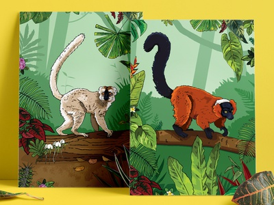 Lemur Habitat Illustrated Posters jungle forest interpretation signage posters red ruffed red fronted trees habitat lemur illustration zoo chester zoo