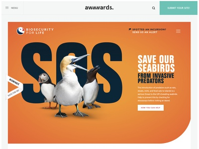 Biosecurity For LIFE Website Design ux single page bird biosecurity development website design user interface nature seabirds ux design awwwards xd logo website