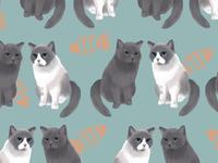 Kitty Wallpaper Design