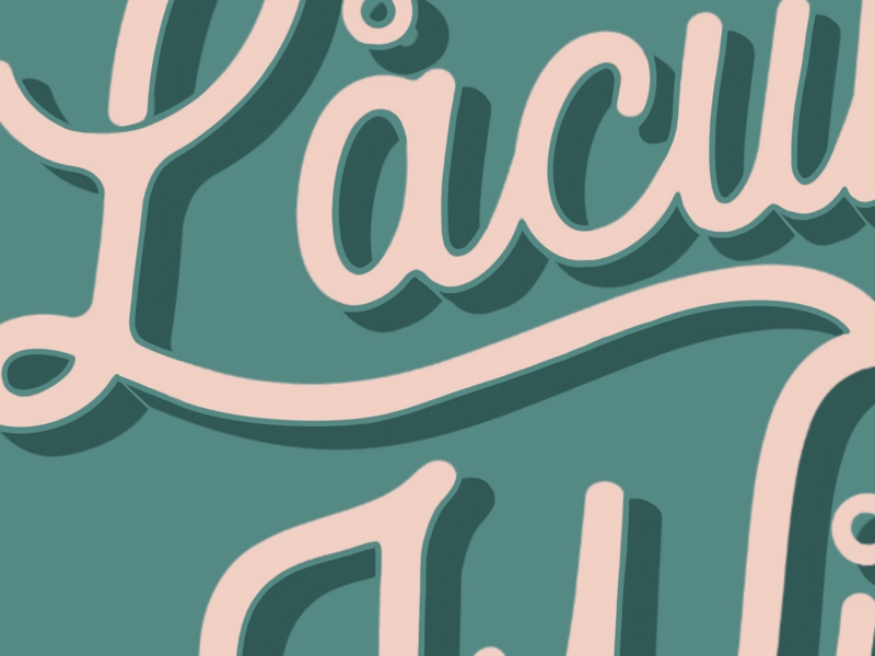 Lacuna Wild- lettering close up lettering brand handlettering